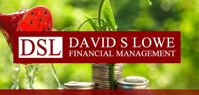 david-s-lowe-portfolio