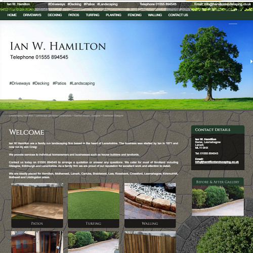 Ian W Hamilton